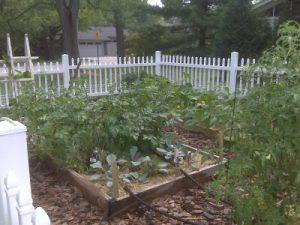 sustainable-garden_1