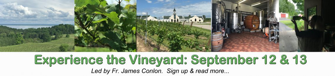 Pilgrimage: Vineyard September 12 & 13